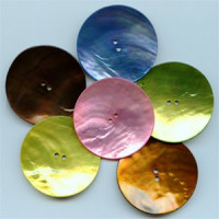 1105-Large Agoya Shell Button, 5 Colors