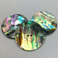 AA-1141-New Zealand Abalone, 3 Sizes
