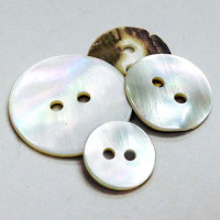 SP-110-Sea Shell Button - 3 Sizes, Sold by the Dozen