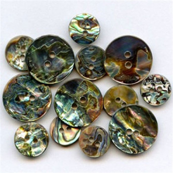 MA-1139 Mexican Abalone Button, 4 Sizes